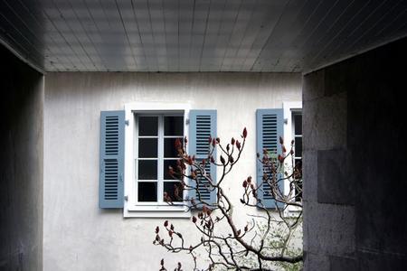 images/window_flower